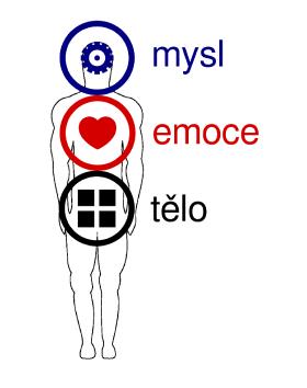 mysl-emoce-telo